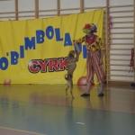 cyrk016